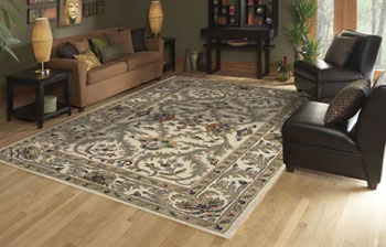 If You Are Looking For An Affordable Area Rug But Donu0027t Want To Sacrifice  Color Or Design, Dalyn Rugs Are For You.